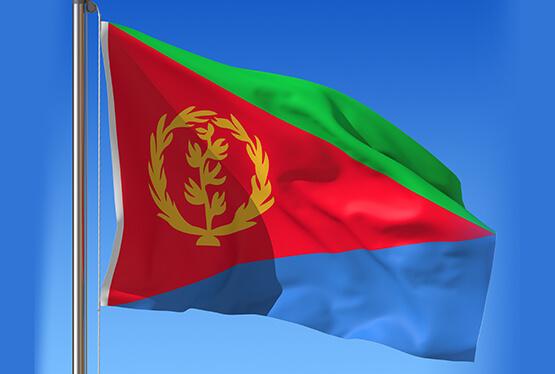Torterade eritreaner far asyl